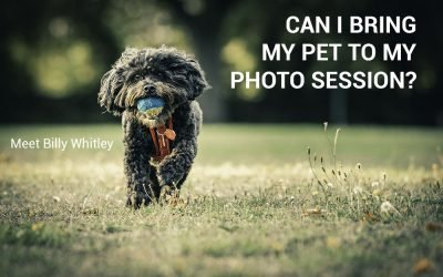 Can I Bring My Pet Along To My Photo Session
